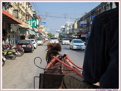 Horse-drawn carriage in Lampang (Isabel Fagg) Tags: horse thailand carriage lampang paardenkoets