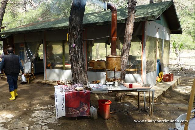 Area de picnic de las Chimaeras