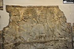 Assyrian Campaign in Southern Iraq against Chaldaeans or Aramaeans (Assyria, Babylon, Akkad, Sumer...) Tags: west south iraq palace southern campaign nineveh mesopotamia assyrian sennacherib aramaean chaladaean
