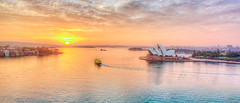 Sydney Opera House / (Young Ko) Tags: ocean travel light sea vacation sky sun holiday seascape reflection water yellow clouds sunrise landscape interesting nikon colorful flickr sydney atmosphere overcast nsw firstlight