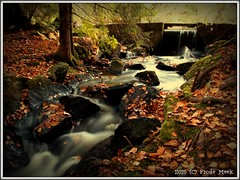 Autumn Stream (frdmk) Tags: autumn fall water stream