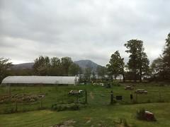 Community garden (Simon Varwell) Tags: knoydart inverie