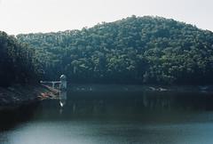 Dam & Haze (Katie Tarpey) Tags: autumn trees film nature water 35mm haze kodak dam healesville victoria reservoir nikonfm10 kodakportra400 maroondah nikkor50mm14 maroondahreservoirpark