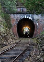 Bore (Dobpics O'Brien) Tags: diesel victorian rail railway healesville tunnel railcar walker valley yarra railways vr tarrawarra branchline 22rm