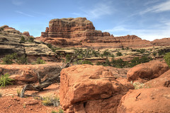 Canyonlands NP Utah (maryannenelson) Tags: rock landscape utah nationalpark spring canyonlands rockformation pitdppr
