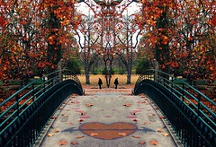 Dream and Reality (alina.) Tags: bridge autumn trees red green love leaves canon mirror heart dream reality arrow conceptual twopeople onetreehill rombergpark canon550d canoneos550d alinacerny