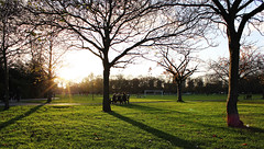 Sungazing (fotosiris) Tags: park trees winter sun london grass canon eos battersea 550d