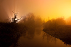 Willow The Wisp, Mill End (flatworldsedge) Tags: longexposure autumn light orange mist blur tree fog night river bare pollution flash
