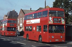 London Transport . DMS65 EGP65J . Chingford Road , Walthamstow , London . 15th-September-1981 . (AndrewHA's) Tags: bus walthamstow daimler fleetline londonbus londontransport chingford crg6 walthamstowgarage route97a dms65 egp65j