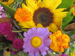 Yellow and Purple Flower Bouquet (shaire productions) Tags: plants plant nature floral garden photo natural image photograph vegetation imagery