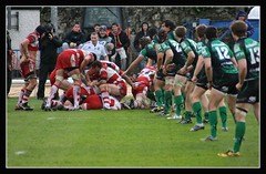 Connacht vs Gloucester (hold on to your shorts) (EoinGardiner) Tags: ireland galway cup sport heineken back rugby line gloucester shorts connacht ruck