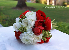 Cupertino CA Wedding Flowers, Red & White bridal bouquet (Signature Bloom) Tags: pictures flowers wedding decorations red white flower floral for bride design designer events sanjose ranunculus images designs florist cupertino vendor siliconvalley weddings bridal decor peninsula southbay ideas weddingflowers bouquets weddingphotos floraldesign sanjoseca cupertinoca florists specialevents weddingideas bridalflowers weddingdecorations 95014 floraldesigner flowerdesign bridalbouquets 95121 weddingflorist redwedding redbouquets weddingfloral weddingvendor redandwhitewedding flowersforwedding whitebouquets sanjoseflorist springbouquets sanjoseweddingflowers signaturebloom wwwsignaturebloomcom sanjoseweddingflorist bridalflorist weddingfloristsanjose ranunculusbouquets cupertinoflorist