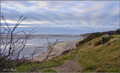 THURSTASTON WIRRAL (Shaun's Nature and Wildlife Images....) Tags: merseyside shaund