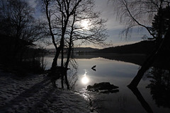 Loch Achilty by Moonlight. (Gordie Broon.) Tags: trees winter snow nature water reflections landscape geotagged photography scotland scenery shadows nightshot alba scenic escocia moonlight schottland contin ecosse scottishhighlands rossshire northernscotland marybank canoneos7d lochachilty torrachilty gordiebroon