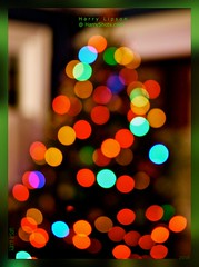 Christmas Tree  (Explore) (Harry Lipson III) Tags: christmas holiday color colors festive colorful bright bokeh christmastree ornaments christmasbokeh panasonicgf1 harrylipsoniii harrylipson harryshotscom harrylipson3 visitharryshotscom iinviteyoutovisitmywebsiteharryshotscom theunsungphotographer theunsungphotographercom totalslackerphotographycom totalslackerphotography thephotographyofharrylipson