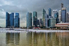 Marina Bay (chooyutshing) Tags: public display celebrations messages marinabay wishingspheres singaporecountdown 20112012