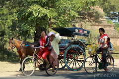 On the way (pinnee.) Tags: cycling burma transportation myanmar cart burmese horsecart bagan nyaungoo burmesewomen oldbagan