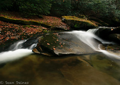 Davidson River, NC (seandeines) Tags: autumn trees fall nature water leaves creek canon river rebel waterfall nc moss rocks northcarolina waterfalls davidsonriver 450d rebelxti