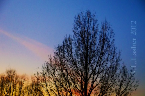 1-9-2012~Evening Colors