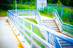 (AXEHD) Tags: bridge blue green bird colors stairs fence sparrow