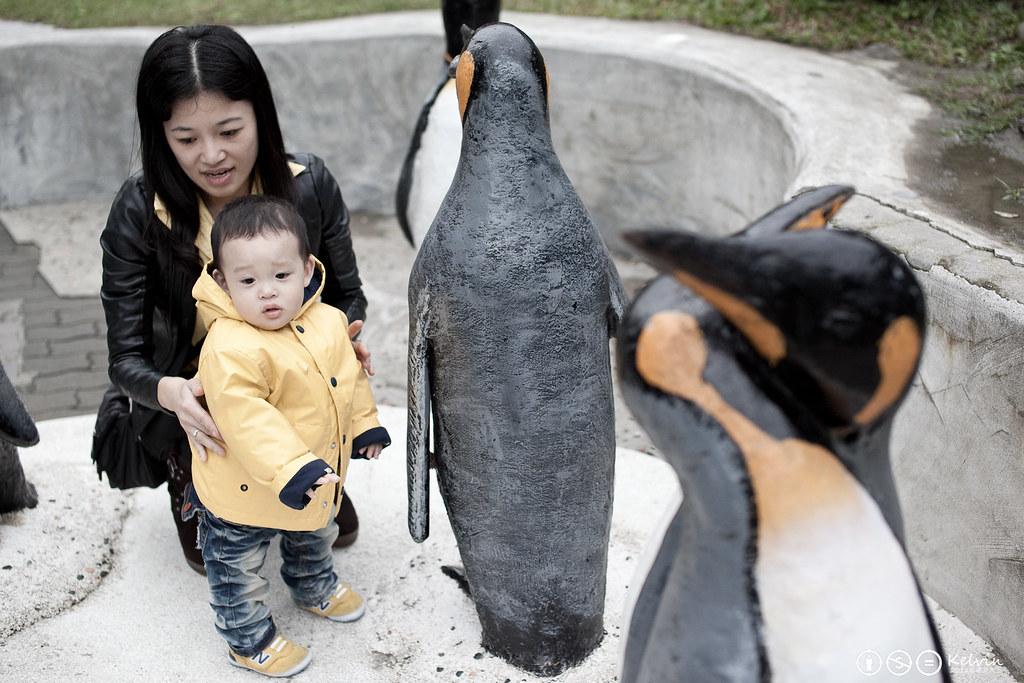 20120115小可樂動物園PAPAGO-13.jpg