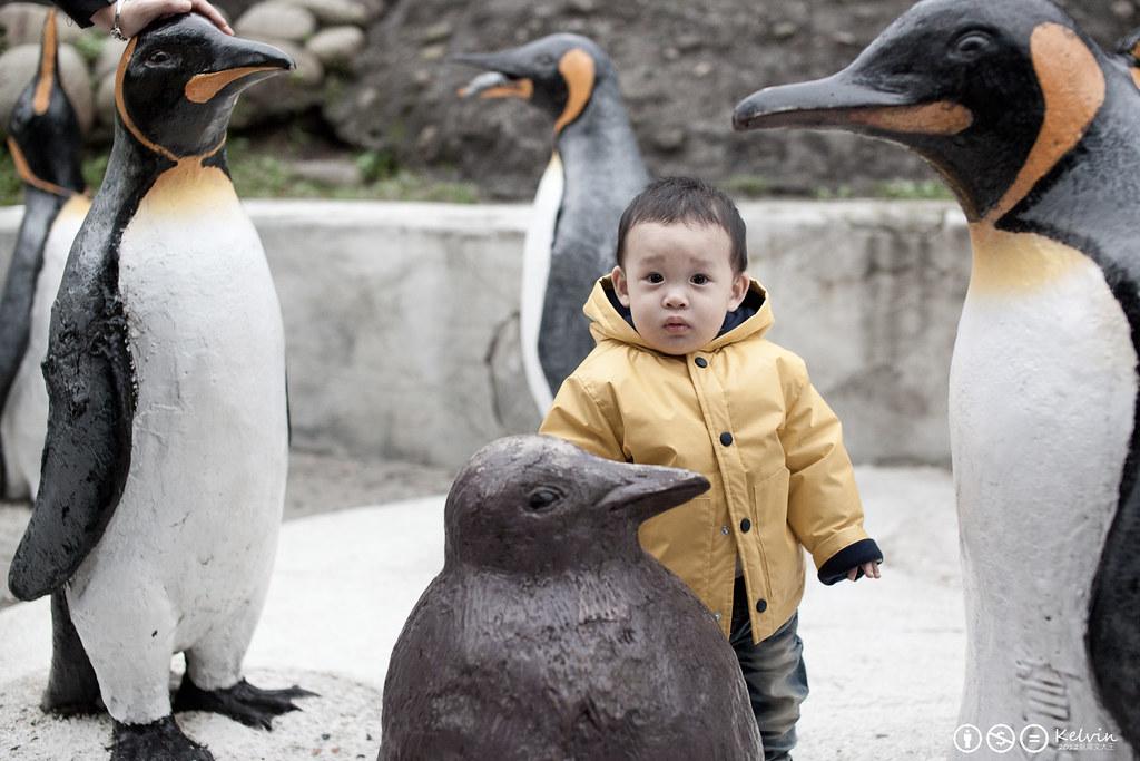 20120115小可樂動物園PAPAGO-14.jpg