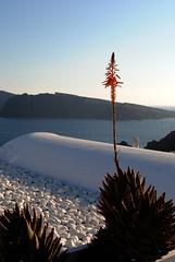 Santorini (bannanapancakes) Tags: santorini grecia cyclades cicladas