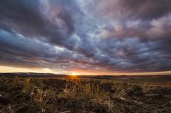 Palouse Winter Storm Clouds (Ryan McGinty) Tags: winter sunset clouds landscape moscow wheat idaho fields palouse sunstar wondersofnature latahcounty ryanmcginty