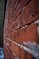 The Wall (The_Milky_Way) Tags: winter snow ontario brick wall canon rebel downtown ottawa bistro xs bywardmarket