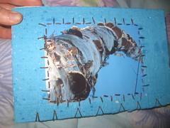 2012 journal (henna lion) Tags: blue winter book diy hand stitch photos spirals diary journal lion joan made papers blank sunflower prints swirls birch etsy henna bound stitched embroidered binding coptic signatures 2012 hamd kovatch hennalion