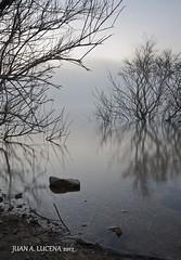 PAZ EXTERIOR (FOTOLUCENA) Tags: luz lago agua sony paz pantano amanecer alfa niebla rama lucena a700 fotolucena