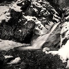falls (hiasl_3) Tags: schnee bw snow fall ice water bayern bavaria waterfall wasser long exposure wasserfall sw eis belichtung longtime langzeit nd110 gettygermanyq4 cascadefahrmannslaine oberauwinter
