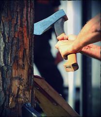 Stihl Timberspors Italia (STIHL TIMBERSPORTS Series  Italia) Tags: standing italia chainsaw axe stihl timbersports underhand hotsaw singlebuck stocksaw