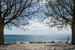 Blick ins Blaue / View into blue (photobeyDE) Tags: de deutschland rgen mecklenburgvorpommern sassnitz