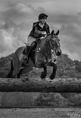 Somerford Park (wiganworryer) Tags: park 2 horse animal sport canon lens photography is photo jumping image zoom outdoor mark picture keith event riding ii hedge 200 7d l series gibson 70 f28 mk equine horseriding 2016 eventing somerford wiganworryer