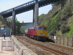 Back Home (Stapleton Road) Tags: diesel champion railway seawall western hydraulic teignmouth class52