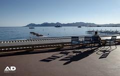 Cannes Croisette (Alexis.D) Tags: sea france simon sam cannes promenade sheperd esterel croisette