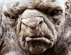 William the Troll (Kiwi-Steve) Tags: newzealand portrait nikon nz troll hobbit wellinton thehobbit wetaworkshop nikond90 wetacave hobbitanunexpectedjourney williamthetroll