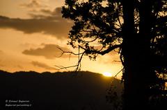 Sunset (Esmaeel Bagherian) Tags: sunset sun tree ایران درخت غروب 2015 ارس 1394 خورشید چشمانداز اسماعیلباقریان esmaeelbagherian