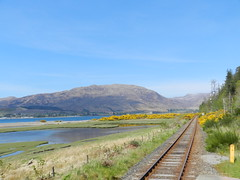 Lochcarron from Attadale Railway Station, Attadale, Wester Ross, May 2016 (allanmaciver) Tags: west station scotland highlands scenery track colours railway straight lochcarron attadale allanmaciver