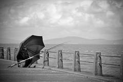 Nice Windbreaker (Charlie Little) Tags: fishing nikon cumbria silloth solwayfirth solwaycoast d7100