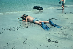"""Family vacations in old Mexico, all of us there and all of us young...."" (Bennilover) Tags: ocean family camping girls fish beach boys swimming children mexico photos families masks cameras snorkling guaymas vacations favoritethings fins seaofcortez 82degreewater"