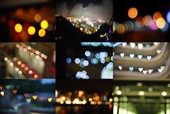 Parade of Lights (sarahtanml) Tags: hongkong colorful bokeh colorfullights cityoflights paradeoflights ilovebokeh hongkongbokeh bokehhearts bokehcollection compilationofbokeh bokehvariety