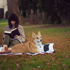 365/299 - November Afternoon (RachelMarieSmith) Tags: woman selfportrait fall photography corgi 365 project365 365project nameofthewind rachelmariesmith