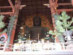 Nara - Buddha (Auratours Tour Operator) Tags: japan temple sensoji tokyo kyoto buddha campana nara shinto giappone lanterna giardino fujiyama tempio higashiyama montefuji heianshrine risci monaci tempiodikiyomizu taitoasakusa