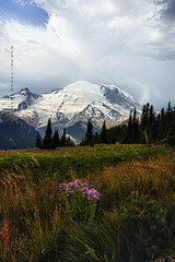 Show me the way (Deby Dixon) Tags: travel trees mountain snow fall tourism nature clouds sunrise outdoors photography volcano washington nationalpark nikon hiking adventure alpine glaciers wildflowers deby allrightsreserved mtrainiernationalpark 2011 debydixon debydixonphotography
