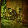 Bicis y ciclomotores (osolev) Tags: africa bike bicicleta morocco maroc bici marrakech medina marrakesh souks marruecos textured ciclomotor zocos osolev tatot