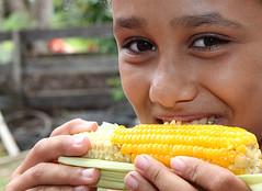 VI Festa do Milho é celebra crescimento da pro...