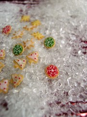 Advent Calendar 8 (Snowfern) Tags: cookies polymerclay 112 piping oneinchscale scaledollhouseminiatures snowfernclover