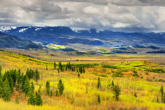 Landscape's Language (Ireena Eleonora Worthy) Tags: wyoming wy grandtetonnationalpark antelopeflats northernstraitsphotography